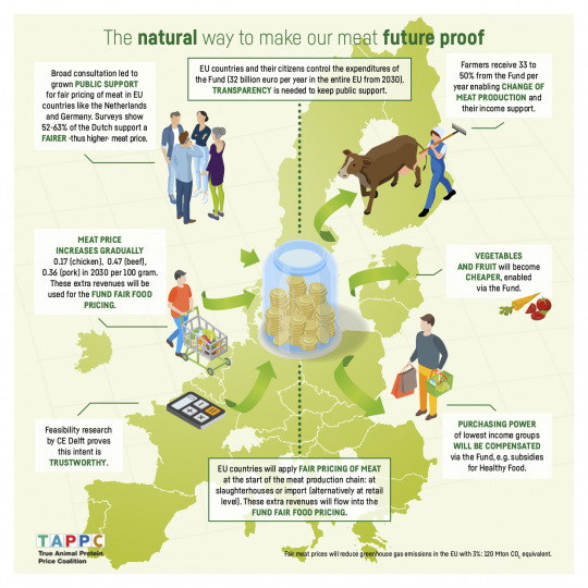 101901001 TAPP Infographic Petitie_PNG_ENG_Europa_v2_LR.png