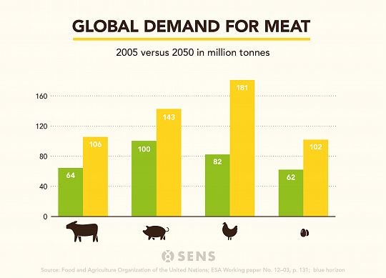 meat-demand-global-2010-2050-global-2-1575666562.jpg